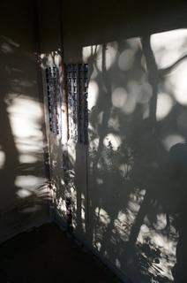影と壁.JPG