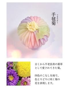 手毬菊2.jpg