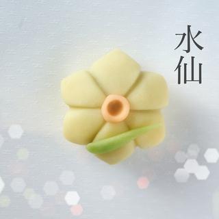 水仙_キラキラ3.jpg